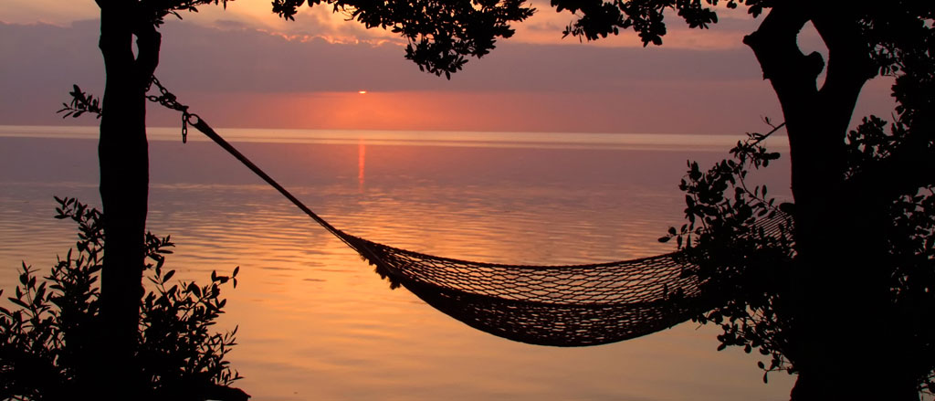 Beach Hammock by Royce Bair