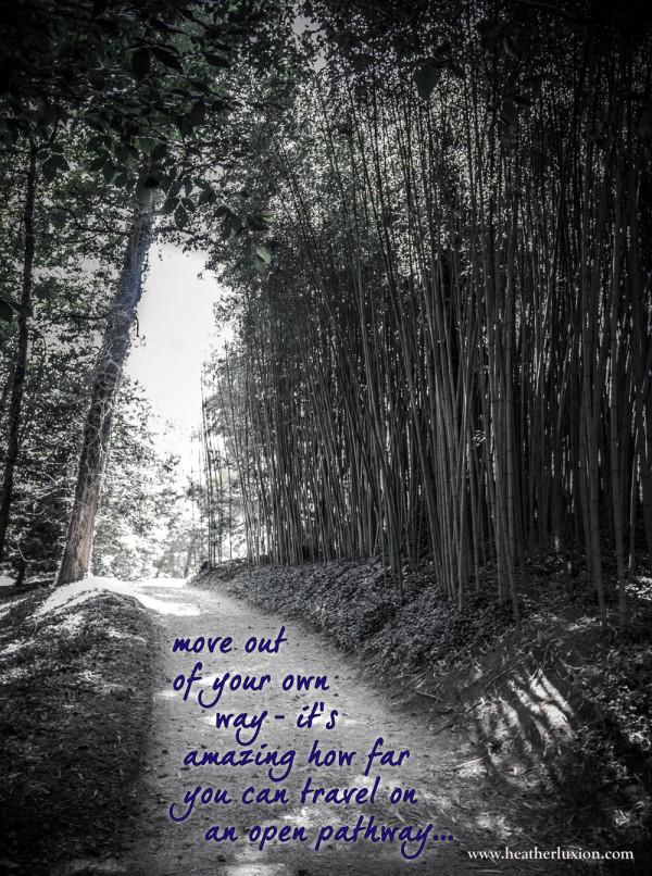 IMG_5632-open-path